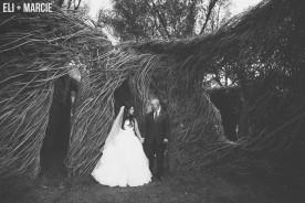 Green Mountain Falls Colorado Wedding Photographer
