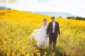 Colorado Springs Summer Wedding Photography